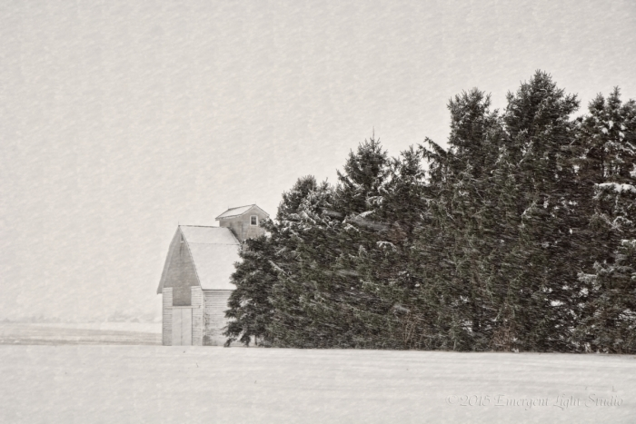 Scene from a Prairie Winter Storm