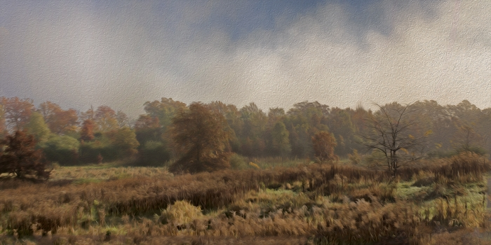 Autumn Morning on the Prairie