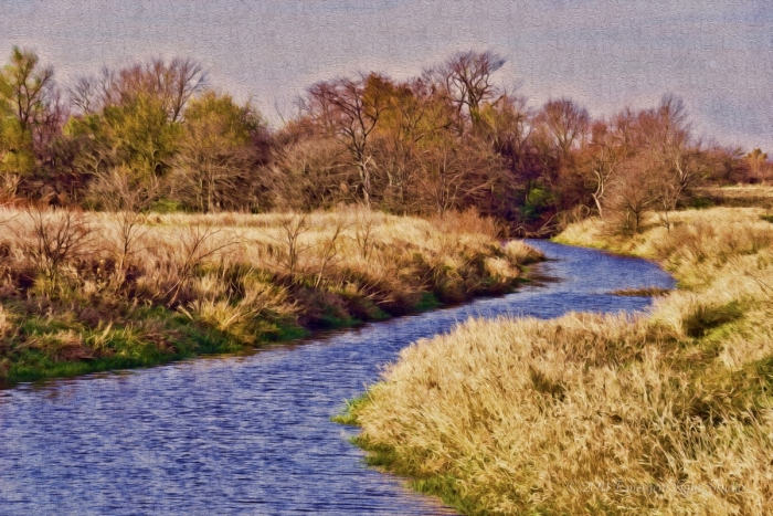 Prairie Stream on a Fall Afternoon