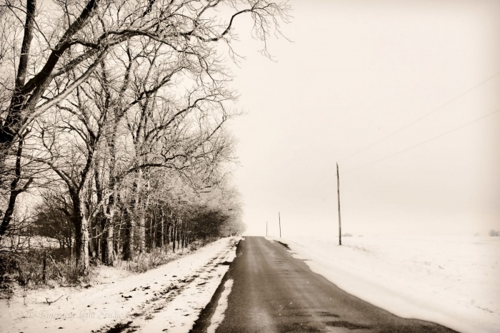 Winter Worlds on a Prairie Road