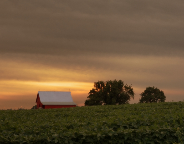Late Summer Afternoon in Rural America