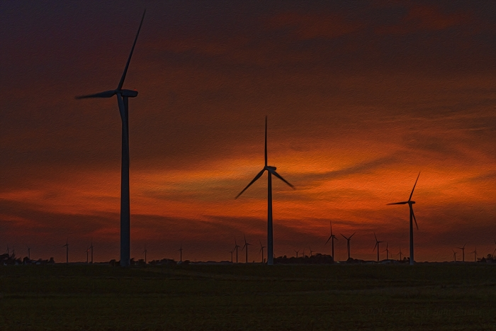 Twilight at a Prairie Wind Farm