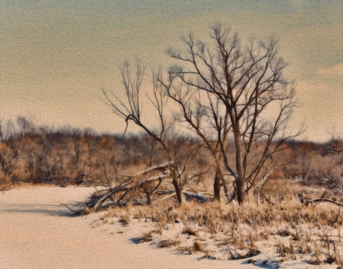 Winter at the Bend in a Prairie River