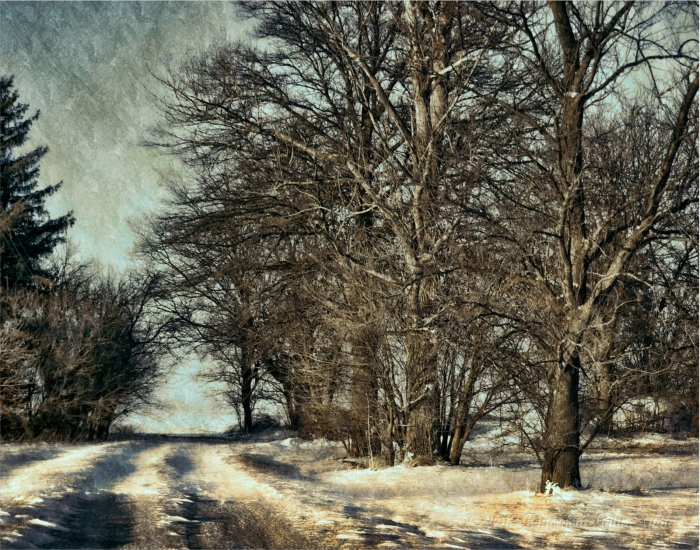 Into Winter on a Narrow Country Road