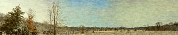Artistry of the Prairie in Late Winter
