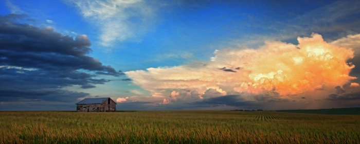 Prairie Afternoon Beauty Grand