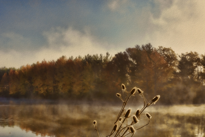 Autumn Morning at a Prairie River
