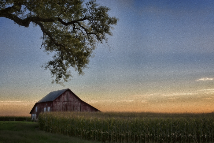 Prairie Farm in Late Afternoon