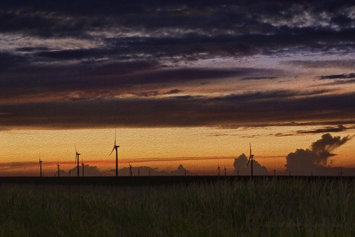 Rural Wind Farm after Sunset