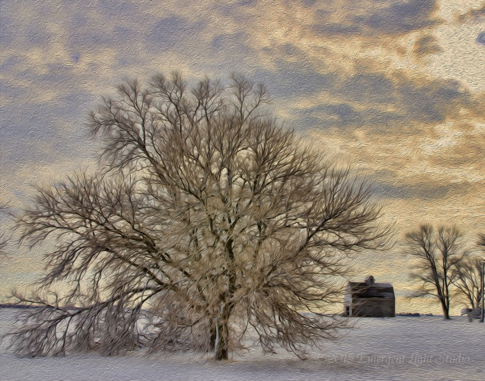 Prairie Winter Afternoon