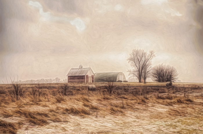Winter Wind on a Prairie Field