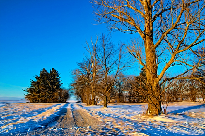 Bright Winter Day on a Country Road