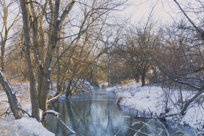 Winter Afternoon at a Prairie Creek